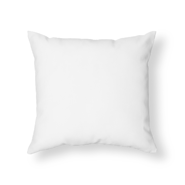 Decorative custom printed throw pillows