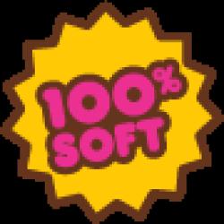 100soft Logo