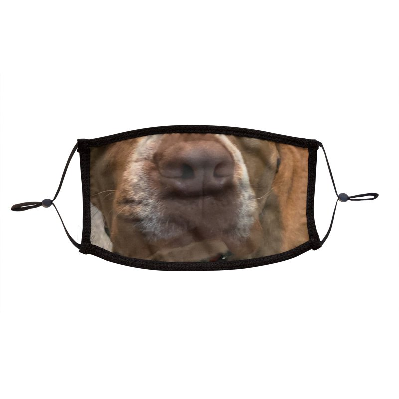 Zara the Pitbull Face Accessories Face Mask by 21 Squirrels Brewery Shop