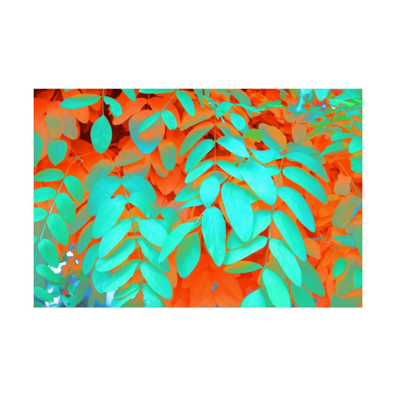 Island Vibe by 3boysenberries