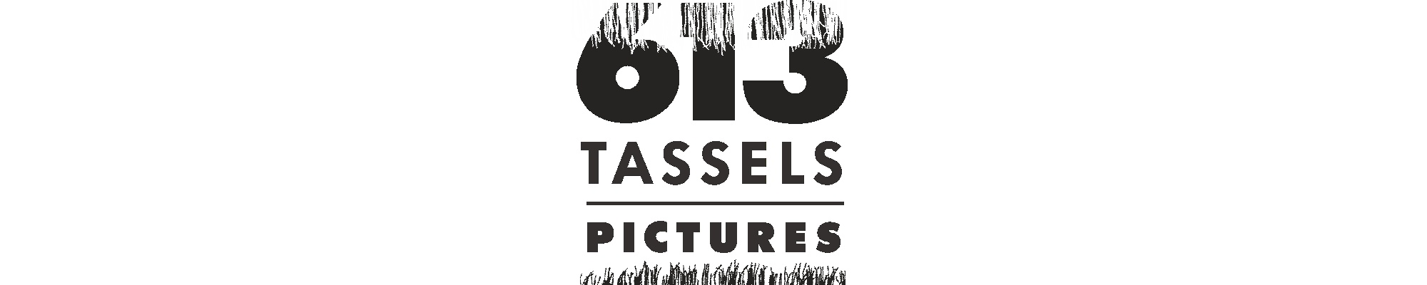 613tasselspicture Cover
