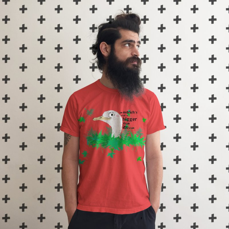 An Ostrich's eye is bigger than it's brain in Men's Triblend T-Shirt Chili Red by Boshik's Tshirt Shop