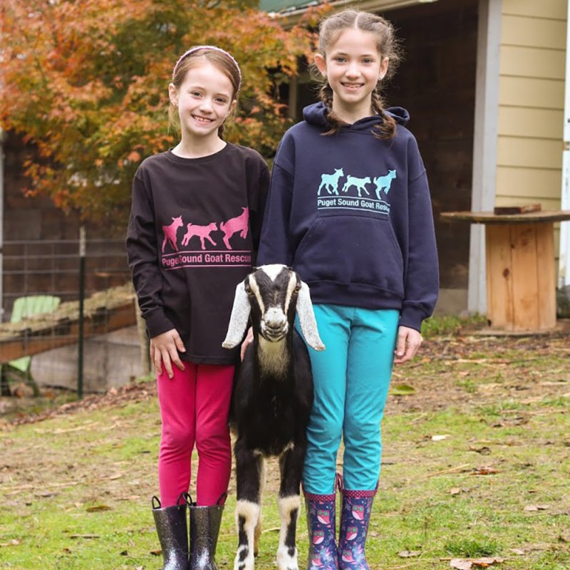3 Baby Goats - Hot Pink by pugetsoundgoatrescue's Artist Shop