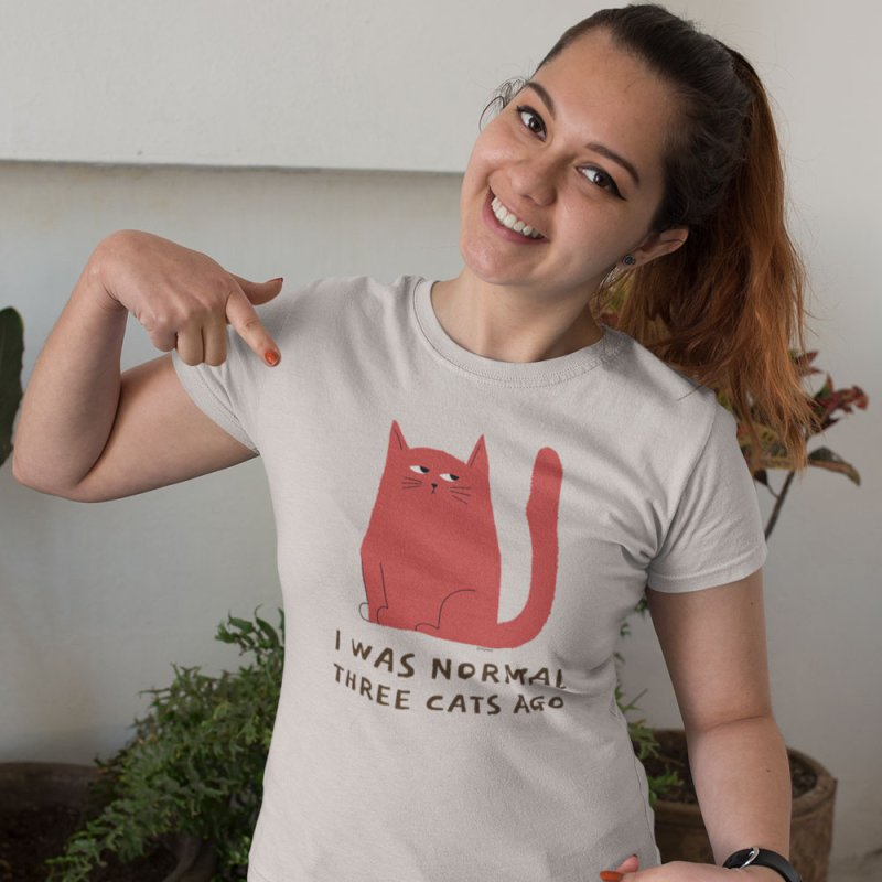 I Was Normal Three Cats Ago in Women's Extra Soft T-Shirt Heather Grey by Purrform