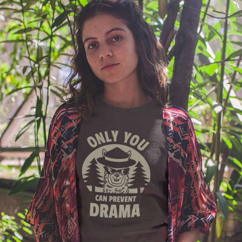 Only You Can Prevent Drama in Men's Extra Soft T-Shirt Chocolate by Toxic Onion