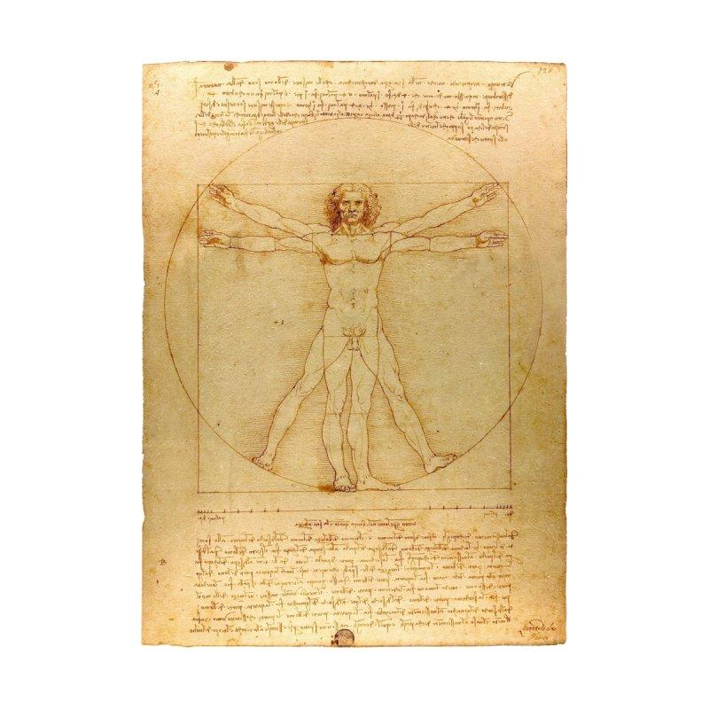 Leonardo Da Vinci Vitruvian Man draw by ALMA VISUAL's Artist Shop