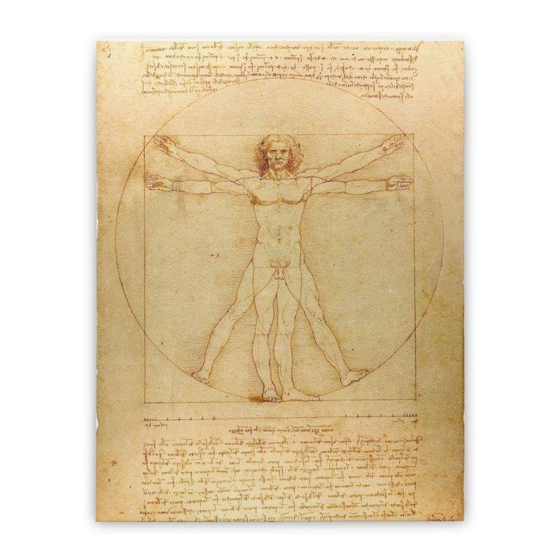 Leonardo Da Vinci Vitruvian Man draw Home Stretched Canvas by ALMA VISUAL's Artist Shop