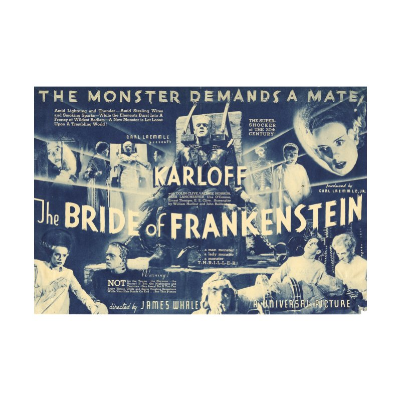 Bride of Frankenstein, vintage horror movie poster by ALMA VISUAL's Artist Shop