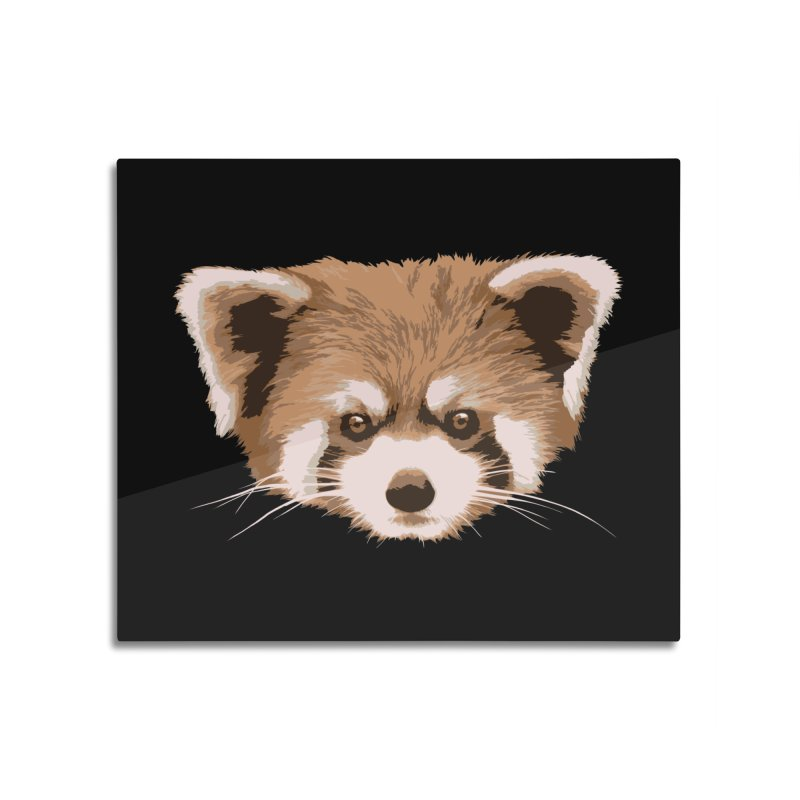 Is it a fox? Is it a panda? No it is a red panda bear! - The Red Panda - Home Mounted Acrylic Print by ARTinfusion - Get your's now!