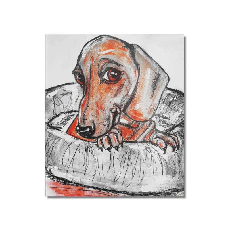 Dachshund  Puppy- Version 2 Home Mounted Acrylic Print by AlmaT's Artist Shop