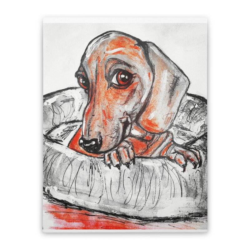 Dachshund  Puppy- Version 2 Home Stretched Canvas by AlmaT's Artist Shop