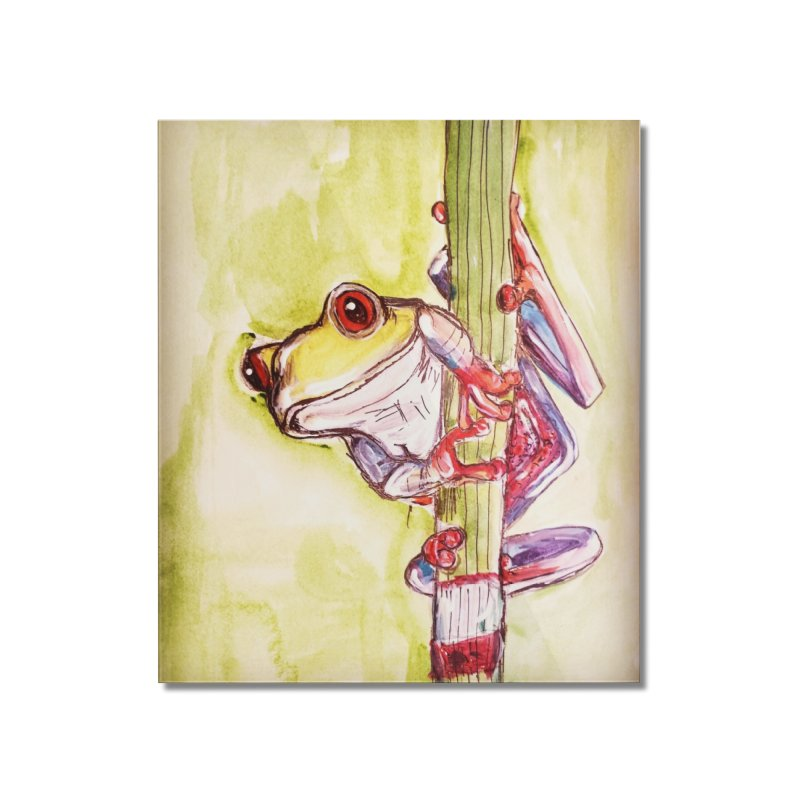 Red-eyed tree frog Home Mounted Acrylic Print by AlmaT's Artist Shop