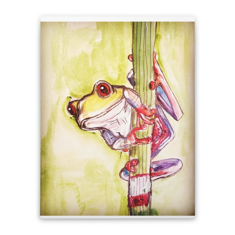 Red-eyed tree frog Home Stretched Canvas by AlmaT's Artist Shop