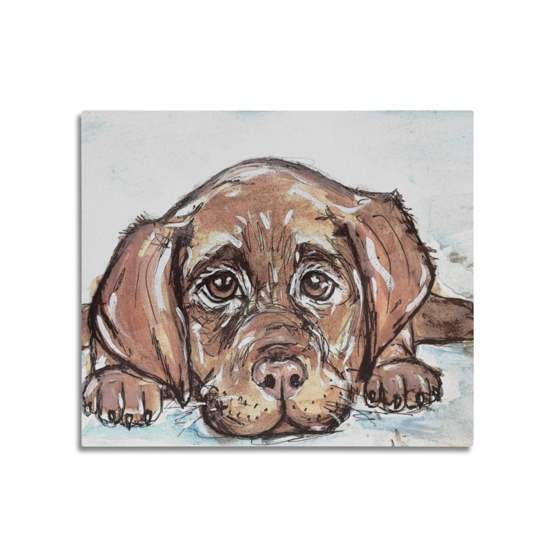 Chocolate Lab Puppy Home Mounted Acrylic Print by AlmaT's Artist Shop