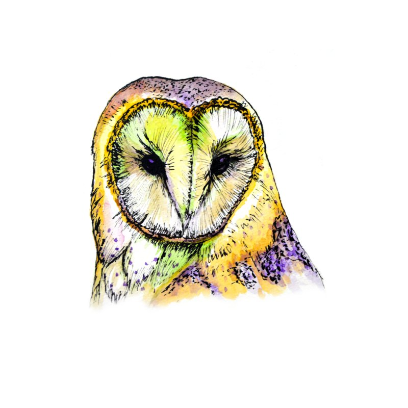 Rainbow Barn Owl by Angerine's Artist Shop