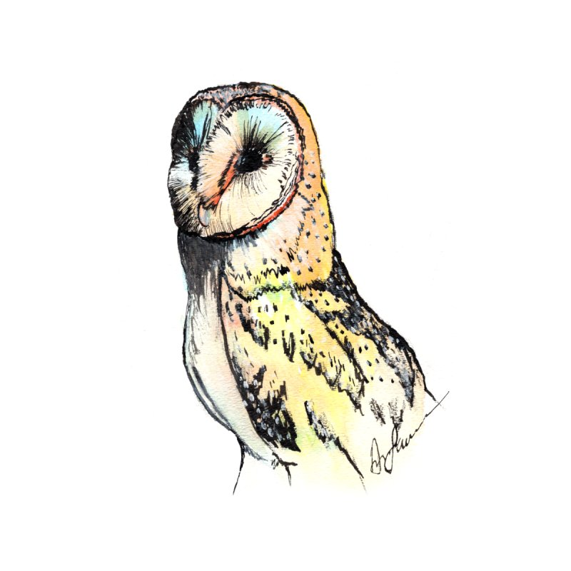 Barn Owl Profile by Angerine's Artist Shop