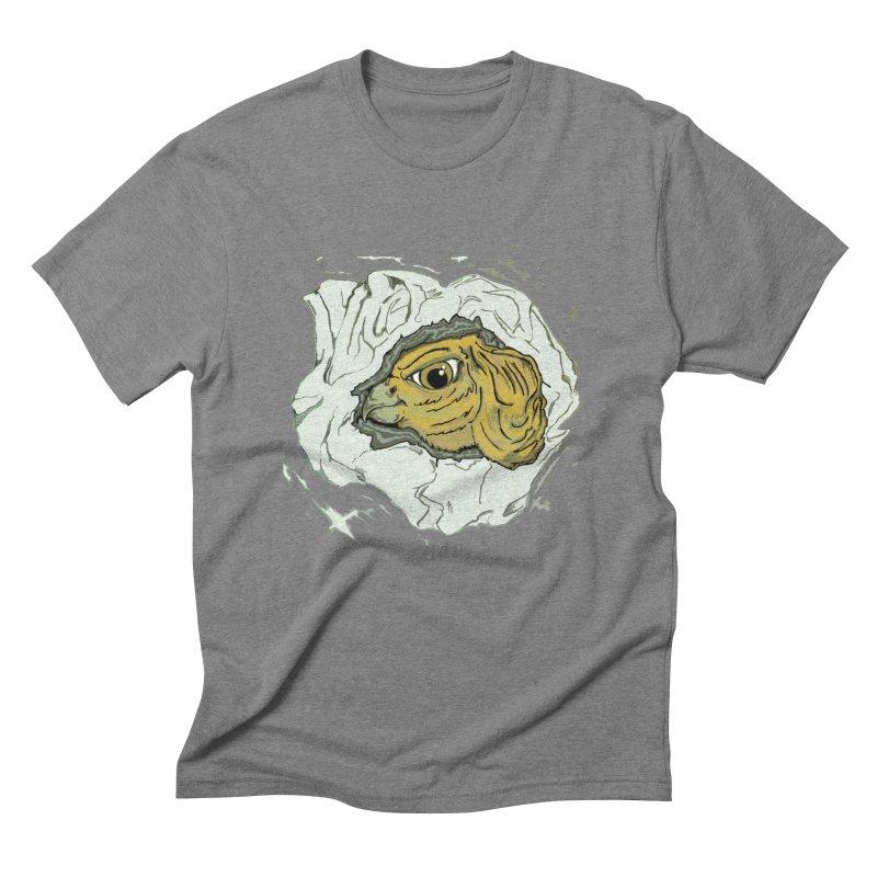 PaperEagle1 Men's Triblend T-Shirt by Artluvr80's Shop