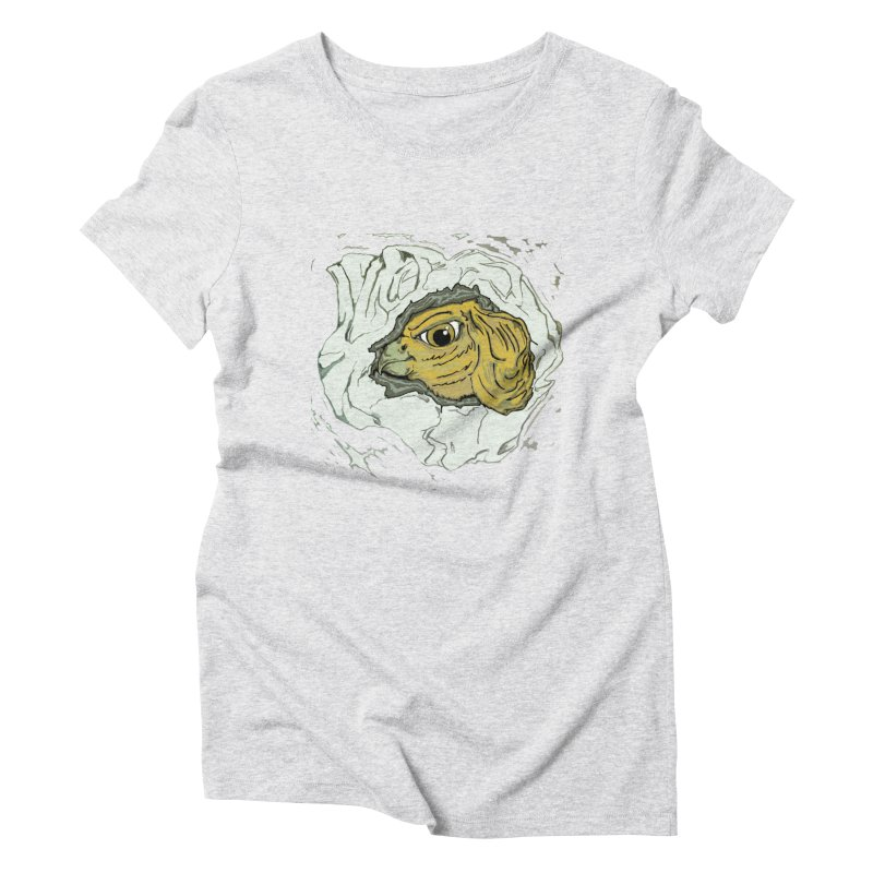 PaperEagle1 Women's Triblend T-Shirt by Artluvr80's Shop