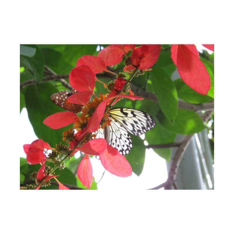 White Butterfly on Red Flowers in the Sun Accessories Bag by ArtsFolly's Artist Shop