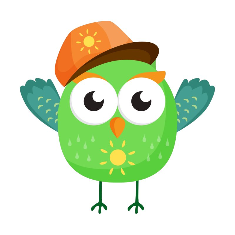 Green Owl with Sun on Hat T Shirt by Aura Designs | Funny T shirt, Sweatshirt, Phone ca