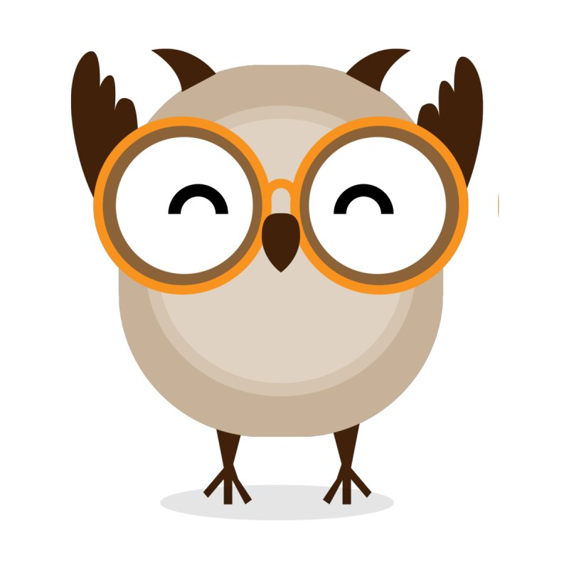 Hurrah Owl T Shirt by Aura Designs | Funny T shirt, Sweatshirt, Phone ca
