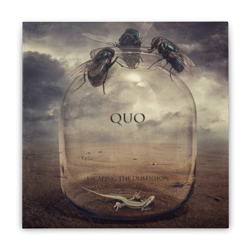 Quo Escaping the Dimension Home Stretched Canvas by automatonofficial's Artist Shop