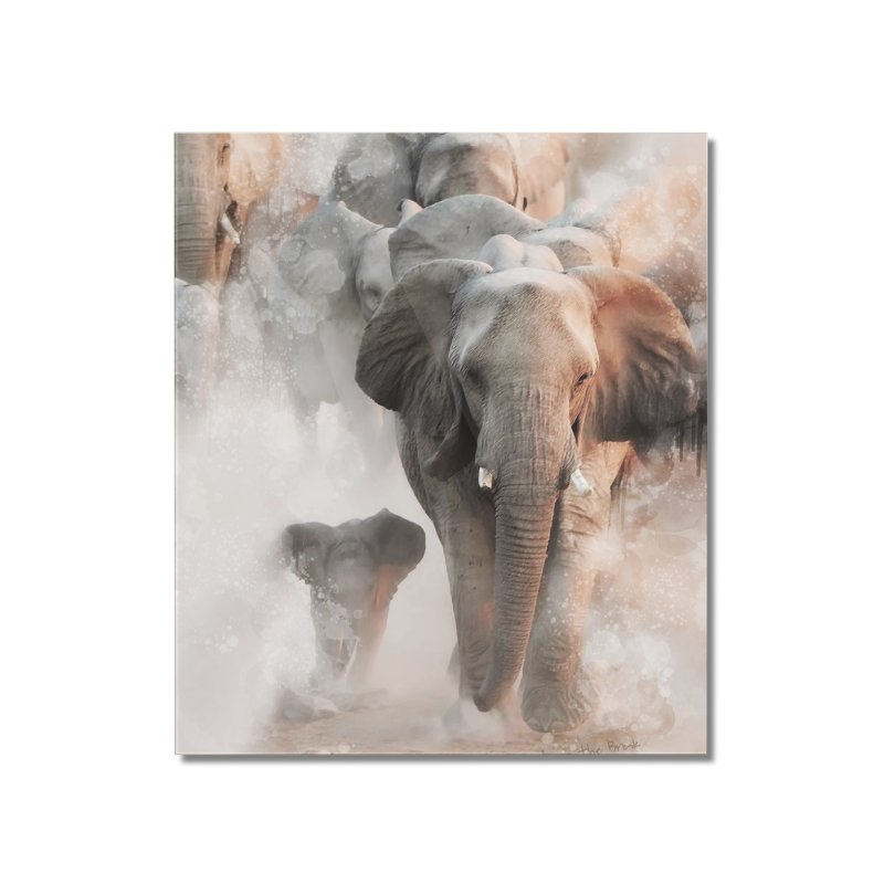 Elephant Herd on the Move Home Mounted Acrylic Print by Birds on the Brink Sanctuary Shop