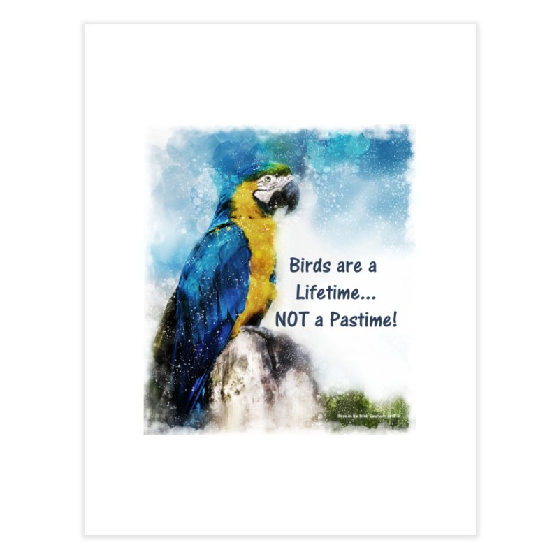 Macaw - Birds are a Lifetime, NOT a Pastime! Home Fine Art Print by Birds on the Brink Sanctuary Shop