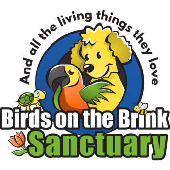 Birds on the Brink Sanctuary Shop Logo
