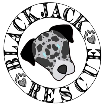 Blackjack Animal Rescue's Shop Logo