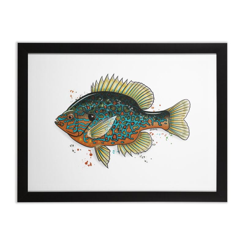Pumpkinseed Fine Art Print in Framed Fine Art Print Black by Boneyard Studio - Boneyard Fly Gear