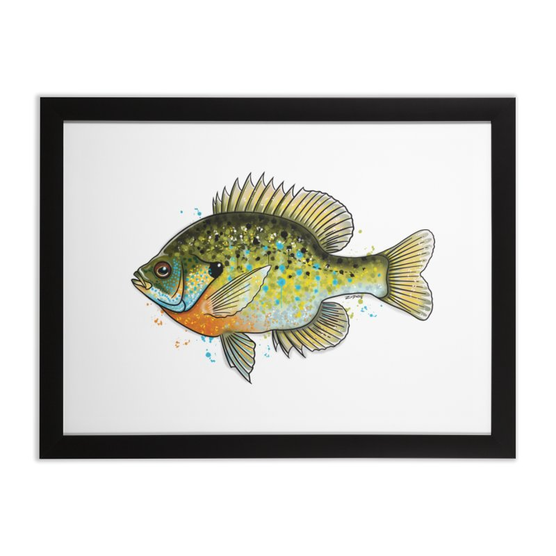 Bluegill 2018 - Fine Art Print Home Framed Fine Art Print by Boneyard Studio - Boneyard Fly Gear