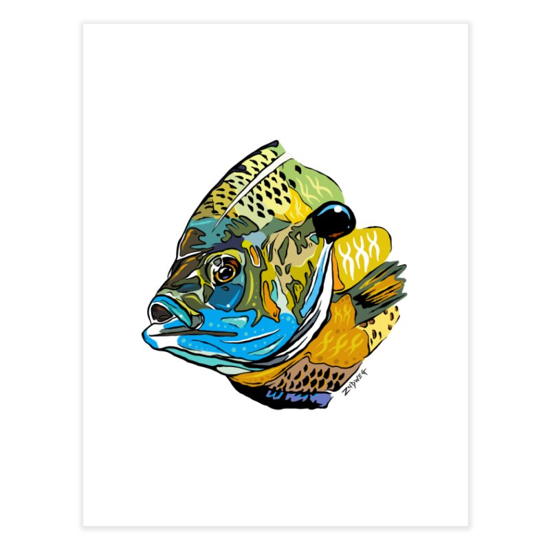 Bluegill F1 Home Fine Art Print by Boneyard Studio - Boneyard Fly Gear