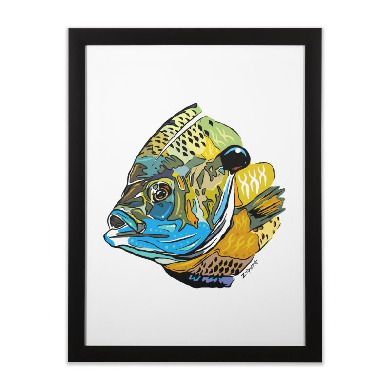 Bluegill F1 in Framed Fine Art Print Black by Boneyard Studio - Boneyard Fly Gear