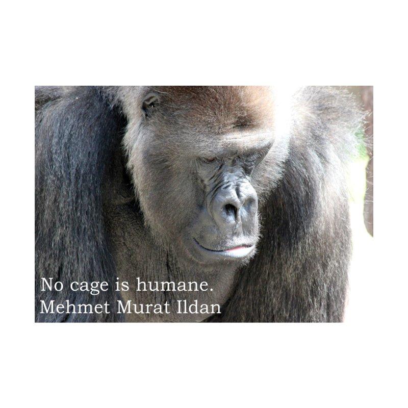 No cage is humane. gorilla by Bonnie Ferrante's Artist Shop