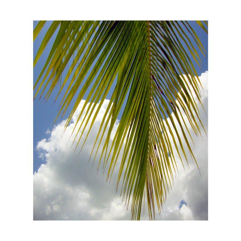 palm frond against sky by Bonnie Ferrante's Artist Shop