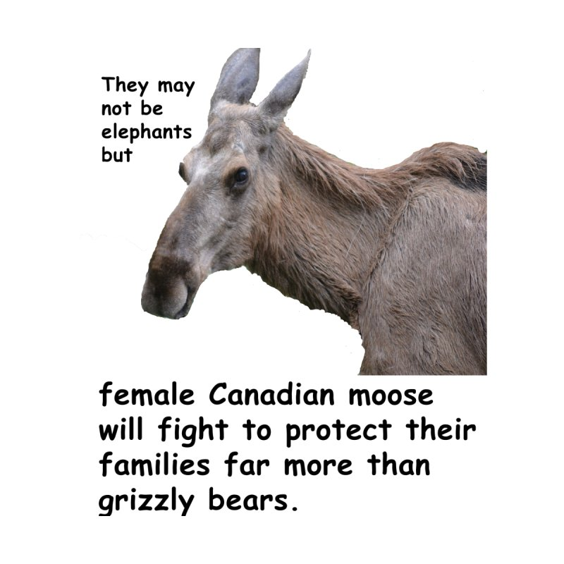 Female moose by Bonnie Ferrante's Artist Shop