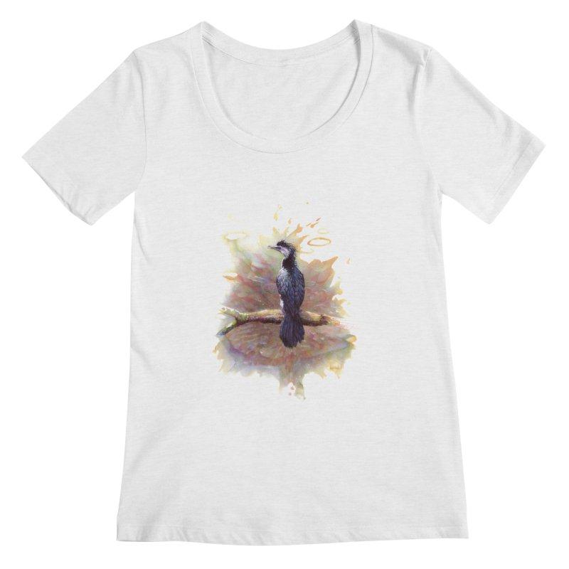 Pied Cormorant   by BradGresham's Artist Shop