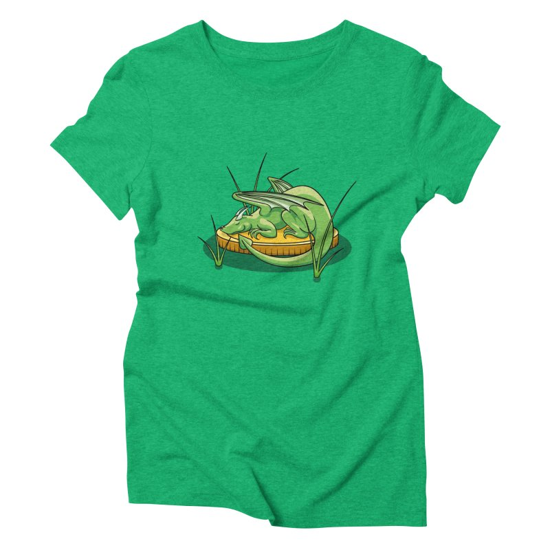 Draconis Minimis Women's Triblend T-Shirt by BrainMatter's Artist Shop