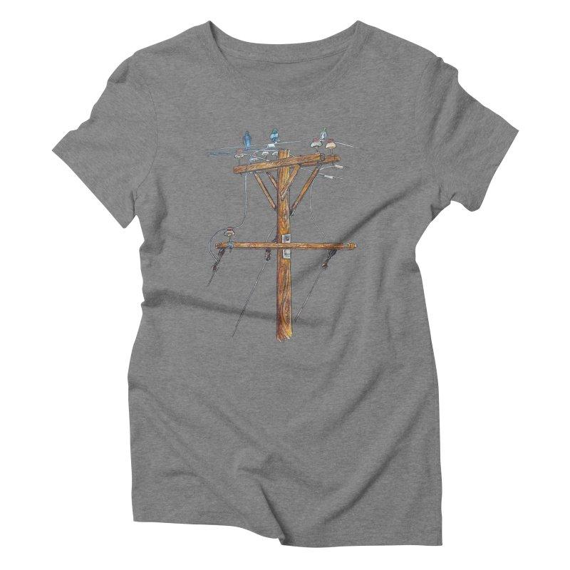 3 Little Birds Women's Triblend T-Shirt by Brick Alley Studio's Artist Shop