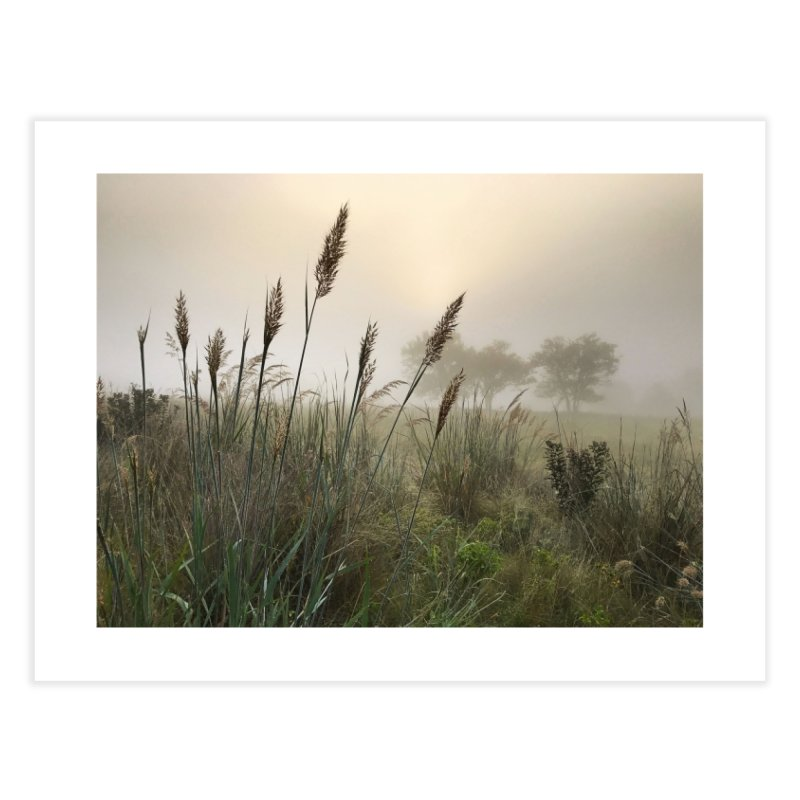 Grasslands in the Morning (photo) Home Fine Art Print by Brick Alley Studio's Artist Shop