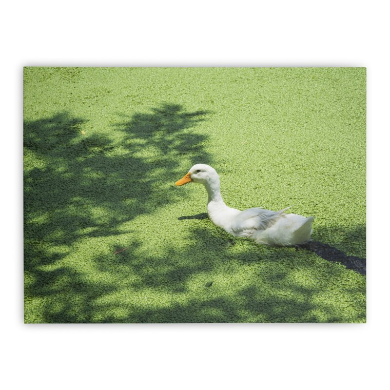 Duck over green peas Home Stretched Canvas by BrocoliArtprint