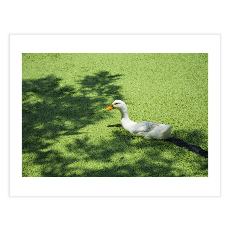 Duck over green peas Home Fine Art Print by BrocoliArtprint