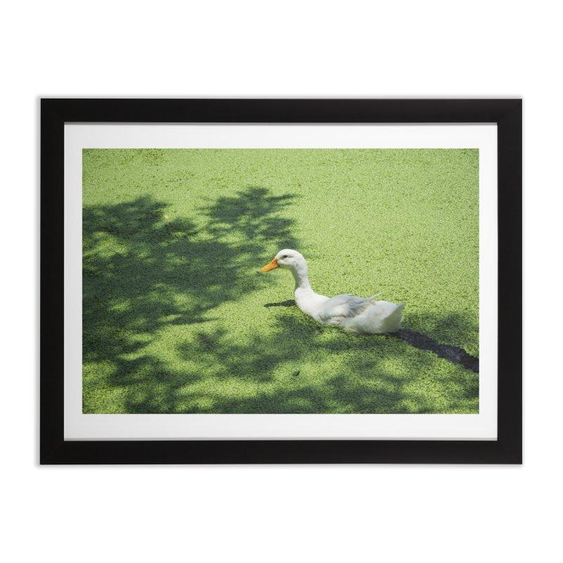 Duck over green peas Home Framed Fine Art Print by BrocoliArtprint