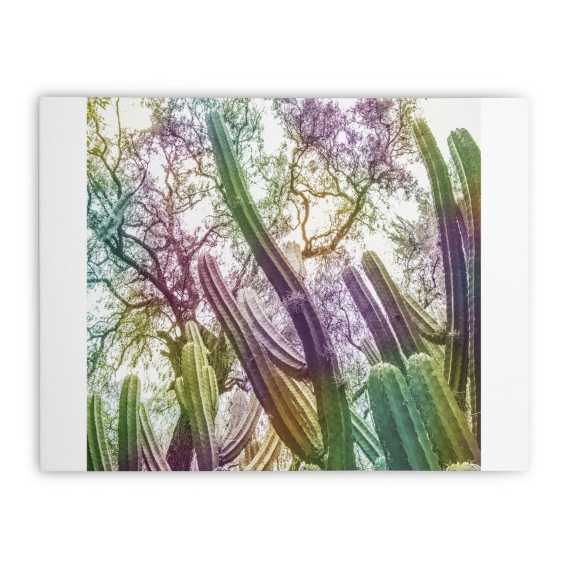 Rainbow Cactus Home Stretched Canvas by BrocoliArtprint