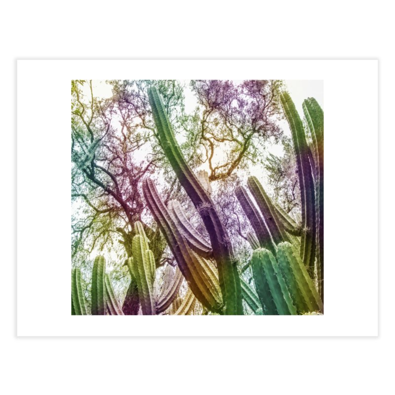 Rainbow Cactus Home Fine Art Print by BrocoliArtprint