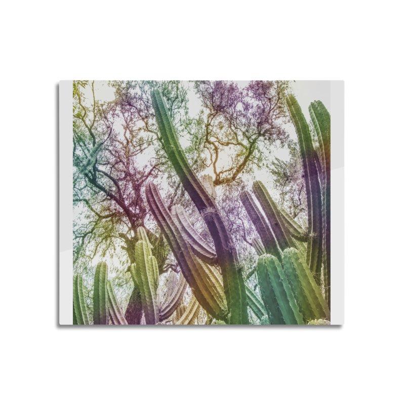 Rainbow Cactus Home Mounted Aluminum Print by BrocoliArtprint