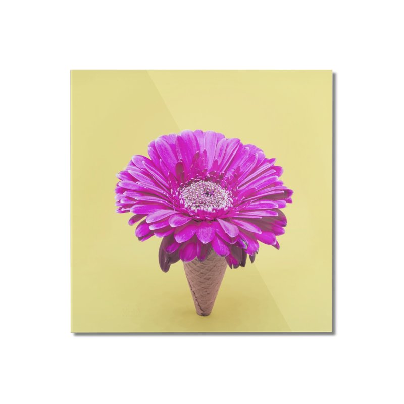Flower Ice Cream Cone Home Mounted Acrylic Print by BrocoliArtprint