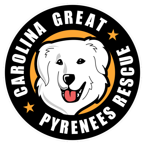Cgpr-Official-Logo