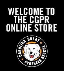 CGPR Logo